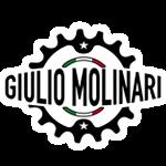 GIULIO MOLINARI